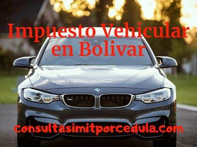 pagar impuesto vehicular bolivar