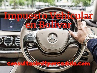 consulta impuesto vehiculos bolivar